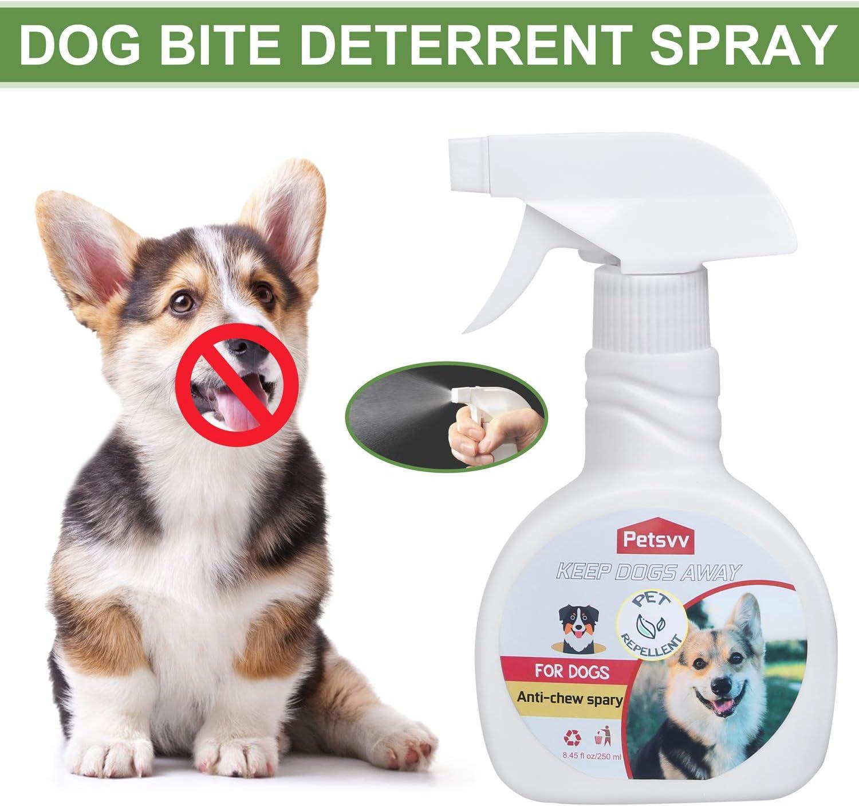Petsvv No Chew Spray Deterrent for Dogs, Purple