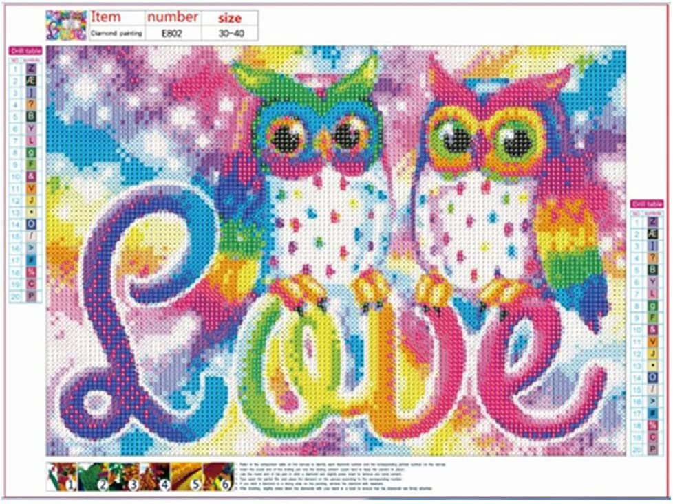 5D Diamond Painting Kits Full Drill DIY Rhinestone Embroidery Cross Stitch Arts Craft for Home Wall Decor Fairy World 30-40
