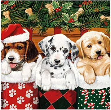 5 servilletas perros navidad serviettentechnik cachorros doggies 1//2 1//4 gorra