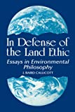 Essay on environmental ethics