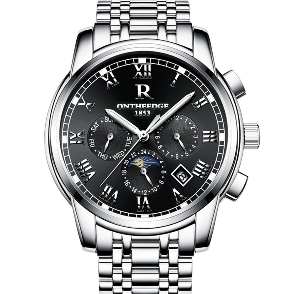 Mens Swiss Automatic movement Watches,Stainless Steel Waterproof Wrist Watch (blacksilver)