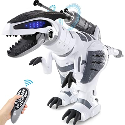 SGILE RC Dinosaur Robot Toy, Smart Programmable Interactive Walk Sing Dance for Kids Gift Present: Toys & Games