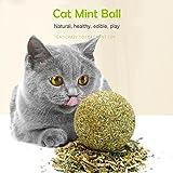 AOLVO Pelota de gato orgánica, juguetes naturales para gatos y gatos, juguete para masticar para gatitos y…