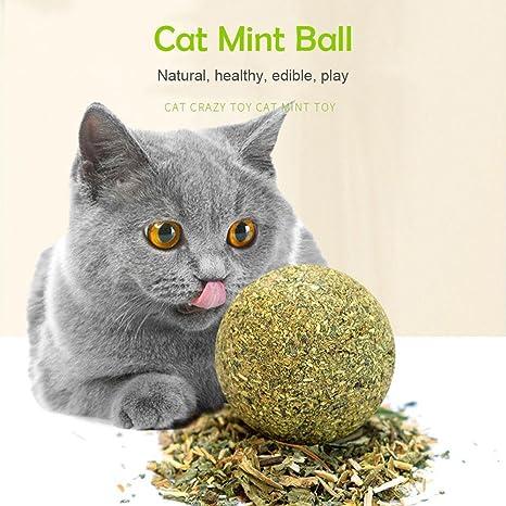AOLVO Pelota de gato orgánica, juguetes naturales para gatos y gatos, juguete para masticar