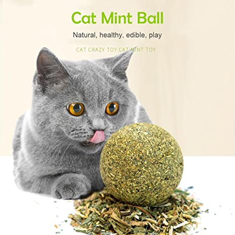 Pawaca Juguetes para gatos, juguetes de pelota de gato para entretenimiento, juego interactivo para