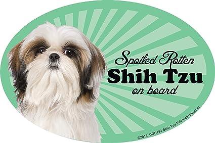 Pomeranian Spoiled Rotten Fridge Magnet