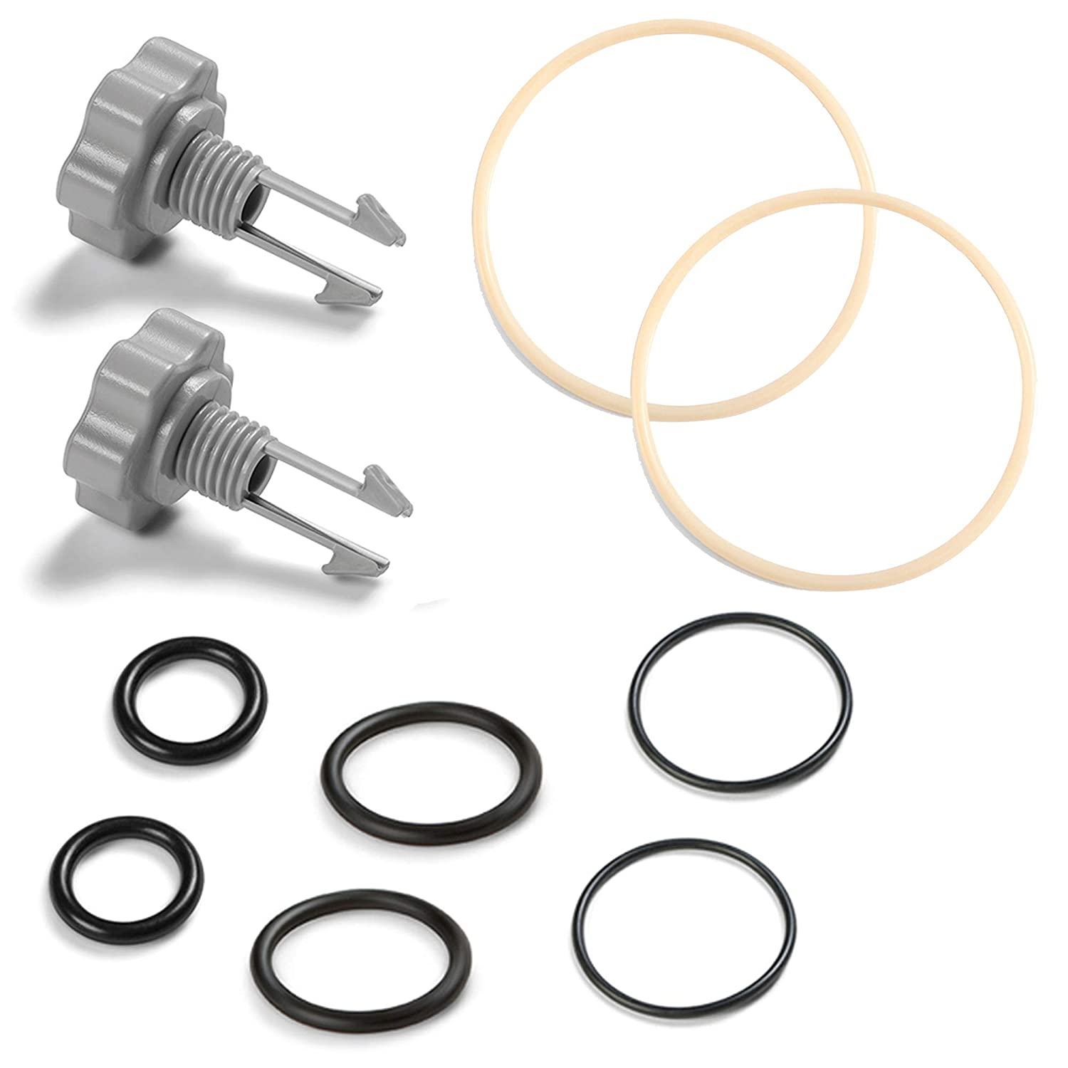 Intex 1500 gal and Below Filter Pump Seals Pack