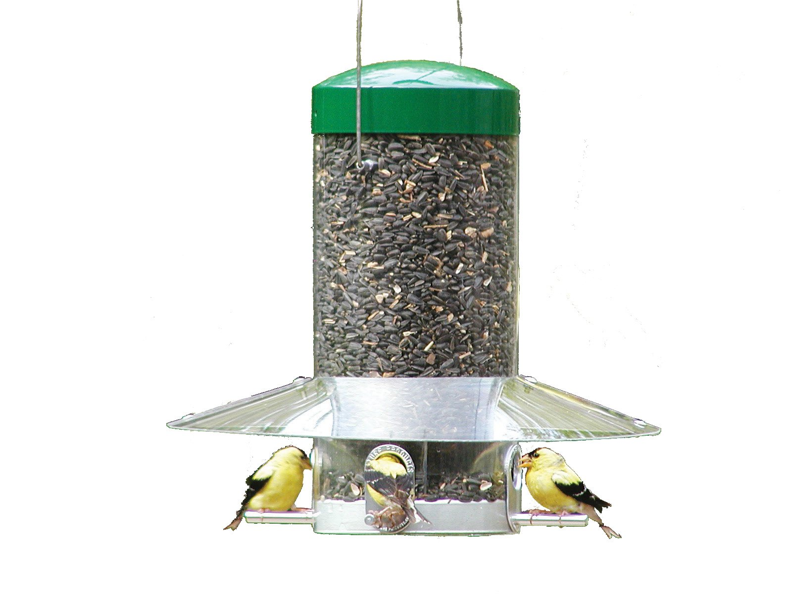 Birds Choice 12'' Classic Hanging Tube Feeder