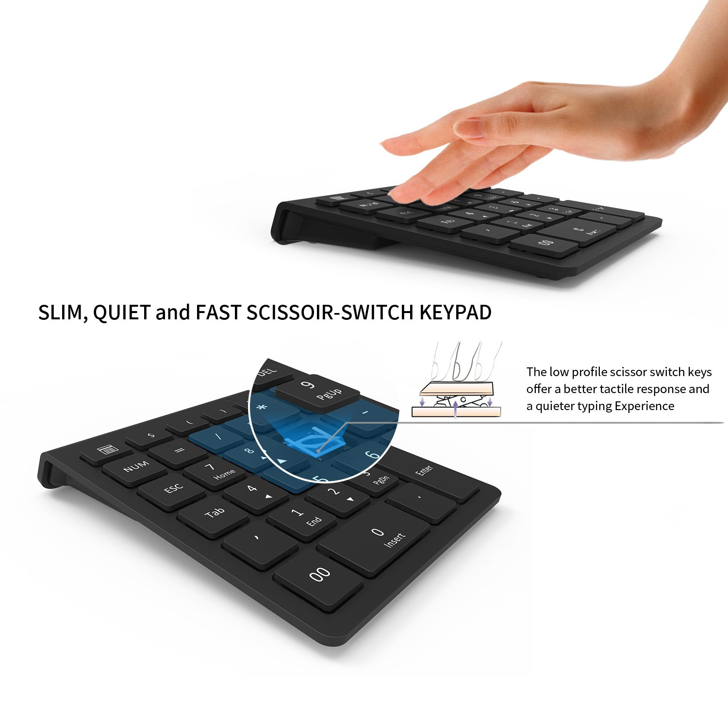 Amazon wireless number pad jelly comb ultra slim 24g wireless amazon wireless number pad jelly comb ultra slim 24g wireless numeric keypad full size 28 key multiple shortcuts with nano receiver for laptop pc buycottarizona Image collections
