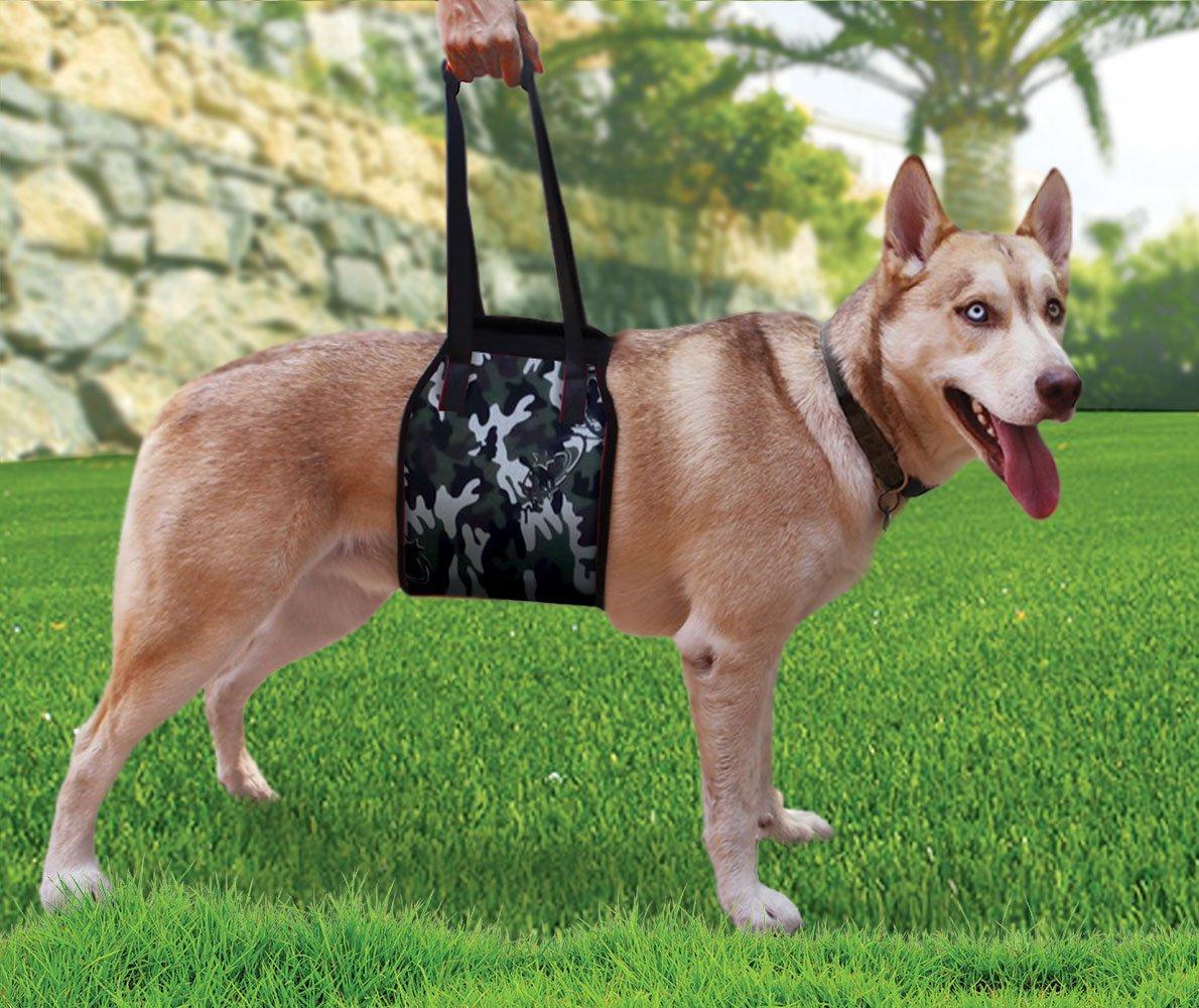Amazon.com : Dog Lift Harness Large Breeds│Rehabilitation Sling for