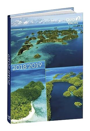 Quo Vadis 1281175Q - Agenda escolar 2018-2019, día página, diseño Melina, 12 x 17 cm, color rocher: Amazon.es: Oficina y papelería