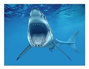 1/4 Sheet ~ Shark Attacking Birthday ~ Edible Cake/Cupcake Topper By Art of Eric Gunty - d3888
