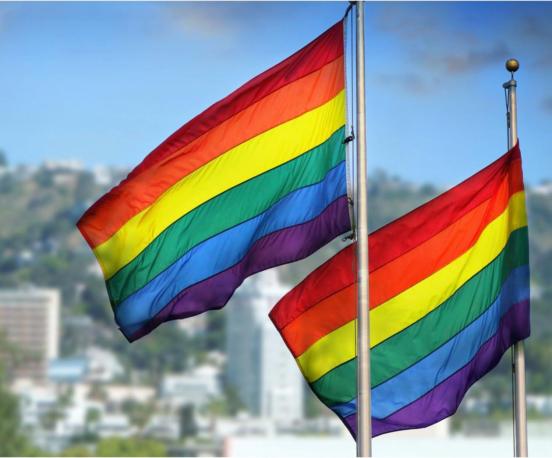 Bandera de Arco Iris de Orgullo de Gay Nueva Bandera de Festival Bandera de Arcoiris de Unisex Bisexual, 5 x 3 pies/ 150 x 90 cm (Color A): Amazon.es: Jardín