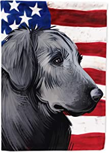 Caroline's Treasures CK6526GF Flat-Coated Retriever American Flag Flag Garden Size, Small, Multicolor