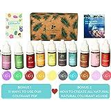 10 color Skin Safe Food Grade Soap Dye, Vegan, Gluten-Free -Liquid Bath Bomb Colorant  with bonus Best Soap Making Supplies