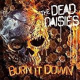 Burn It Down (CD Digi + Bonustrack + Poster)