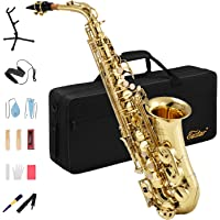 Eastar AS-Ⅱ Student Alto Saxophone E Flat Gold Lacquer Saxophone Full Kit With Carrying Case Mouthpiece Straps Reeds Stand Cork Grease
