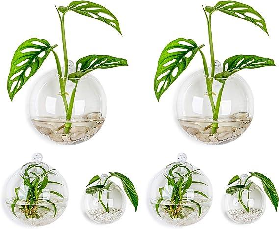 Set of 3 Air Plant HoldersOnion Terrarium Indoor Succulent Garden  Hanging Eggs Shaped Glass Planters