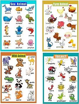 laminated  ANIMALS EDUCATIONAL KIDS POSTERwildlife children school teaching