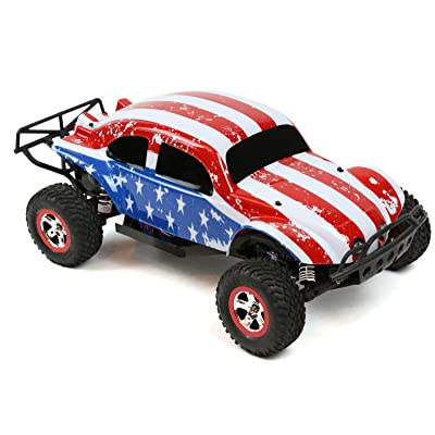 SummitLink Custom Body Flag Strip Style Compatible for 1/10 Scale RC Car or Truck (Truck not Included) SSB-FP-01: Toys & Games