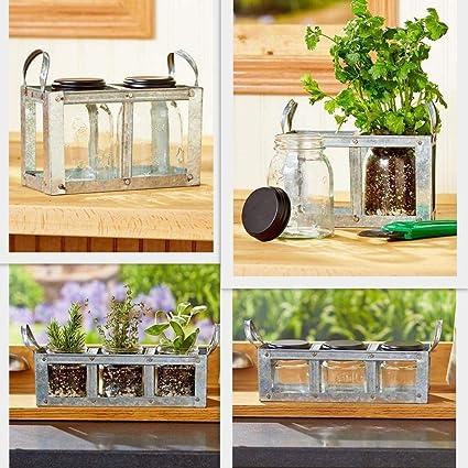 Amazon Com Thaisan7 Farmhouse Kitchen Windowsill Herb Garden Glass