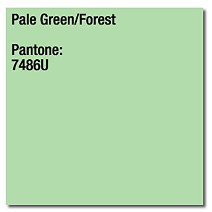 160 gsm A4 Coloraction impresora copiadora papel - bosque verde ...