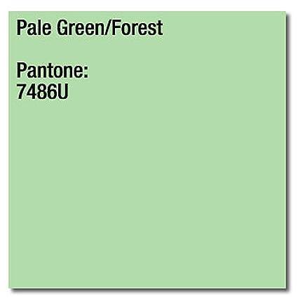 160 gsm A4 Coloraction impresora copiadora papel - bosque verde ...