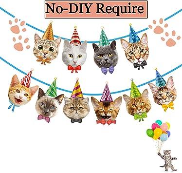 Amazon.com: Funnlot - Guirnalda de cumpleaños para gato ...