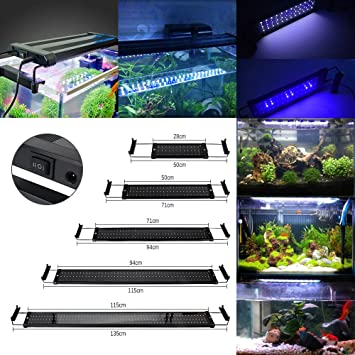 GreenSun Lámpara de Acuario Luces para Acuarios y estanques Se aplica a 28.5 cm 6W 30 LED Blanco y 6 LED Azul con Enchufe EU: Amazon.es: Bricolaje y ...