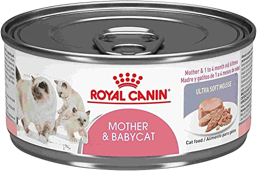 Royal Canin Mother Babycat Canned Cat Food 24×5.8 oz