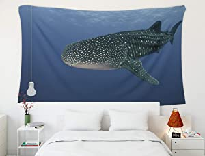 Shorping Wall Hanging Tapestry,Marine Whale,Tapestry, 80x60 Inch Large Tapestry for Décor Bedroom and Dorm Whale Shark Sea of Cortes Mexico