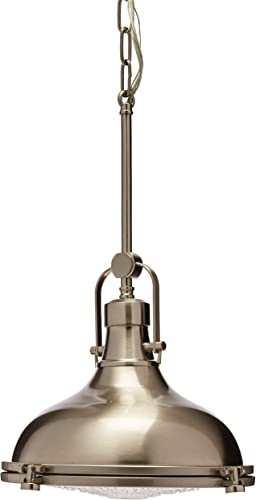Progress Lighting P5188-09 1-100W MED Pendant, Brushed Nickel
