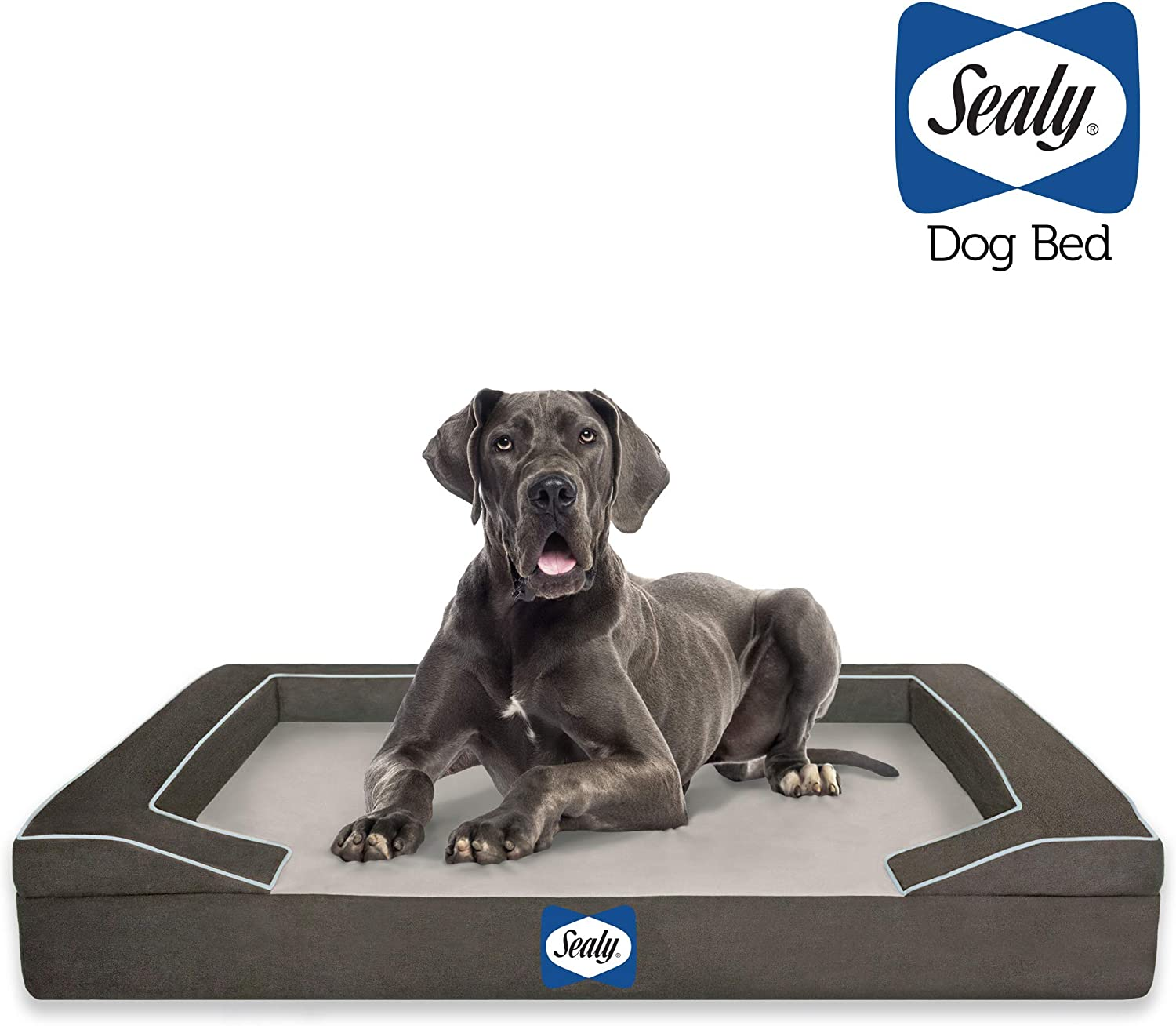 Autumn Brown Machine Washable Cover Orthopedic Foam Small Sealy Lux Pet Dog Bed Quad Layer Technology with Memory Foam and Cooling Energy Gel