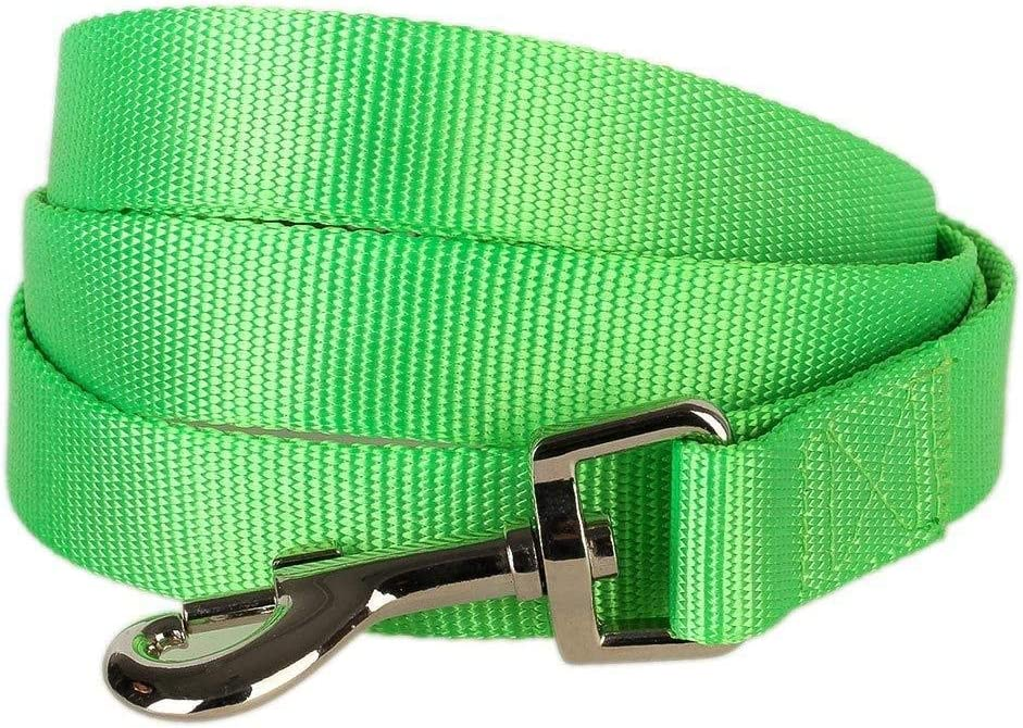 Blueberry Pet Essentials 20+ Colors Durable Classic Dog Leashes, Double Handle Leashes, Rope Leashes