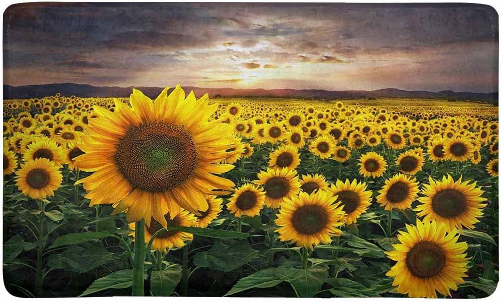 InterestPrint A Huge Field of Sunflowers Over Beautiful Sunset Doormat Non Slip Indoor/Outdoor Floor Door Mat Home Decor, Entrance Rug Rubber Backing Large 30