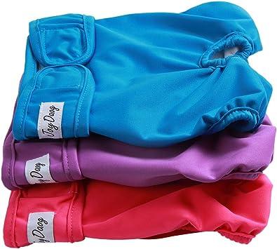 L 3pacchi confortevoli pannolini lavabili riutilizzabili e di alta qualit/à di JoyDaog pannolini per cani di grandi dimensioni per donna