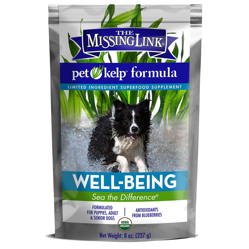 The Missing Link - Organic Pet Kelp, Well-Being Formula - Limited ingredient Superfood Supplement for Dogs rich in balanced Omegas 3, 6, and 9 and antioxidants to support overall health and immunity - 8 ounces by The Missing Link