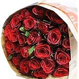 〔エルフルール〕バラの花束 20本 カラー:レッド 結婚記念日 プレゼント 薔薇 誕生日祝い 贈り物 赤 還暦祝い クリスマス 花ギフト フラワーギフト