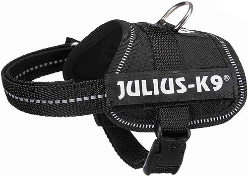 Julius-K9-Powergeschirr-für-Welpen