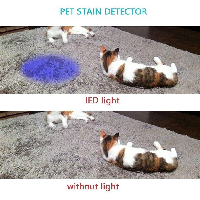 CN-Culture - Linterna de 9 LED UV con luz Negra, Detector de orina para Mascotas para Perros y Gatos, Manchas para Mascotas y Cama, Detector de Insectos: ...