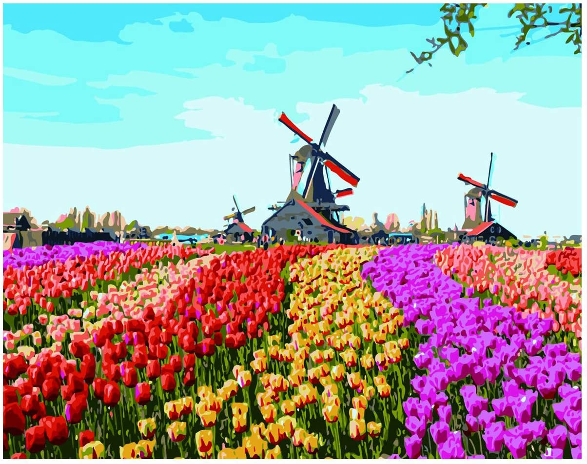 Shukqueen DIY Oil Painting Kit for Kids, Beginner DIY Paint by Numbers Acrylic Oil Painting for Adults Arts Craft for Home Wall Decor - Windmill Flowers 20x26 Inch (Without Frame)