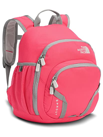0a9b86fd1e7 Northface Sprout Backpack Honeysuckle Pink Purdy Pink by The North Face:  Amazon.in: Bags, Wallets & Luggage