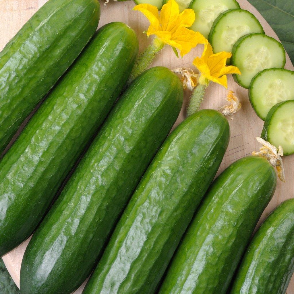 GROSEEDS - Vegetable Seeds, Cucumber - Marketmore, V-CUC-07, 30 Seeds Minimum Per Packet.