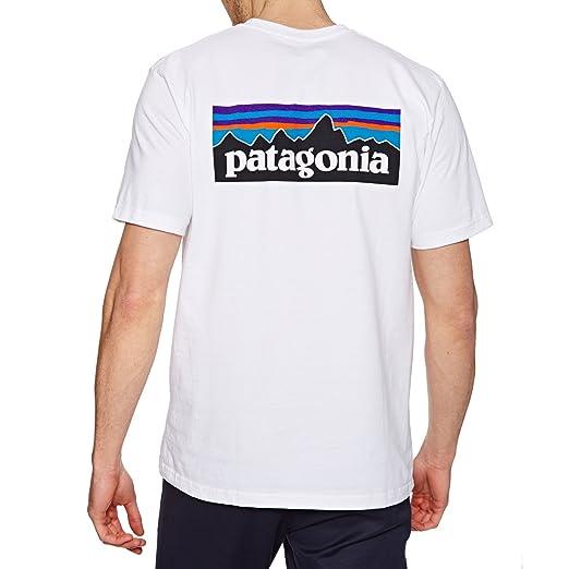 PatagoniaパタゴニアM'sP-6LogoResponsibili-TeeメンズTシャツ半袖39174の画像
