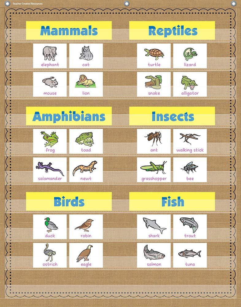 Burlap 10 Pocket Pocket Chart (34'' x 44'') by Teacher Created Resources