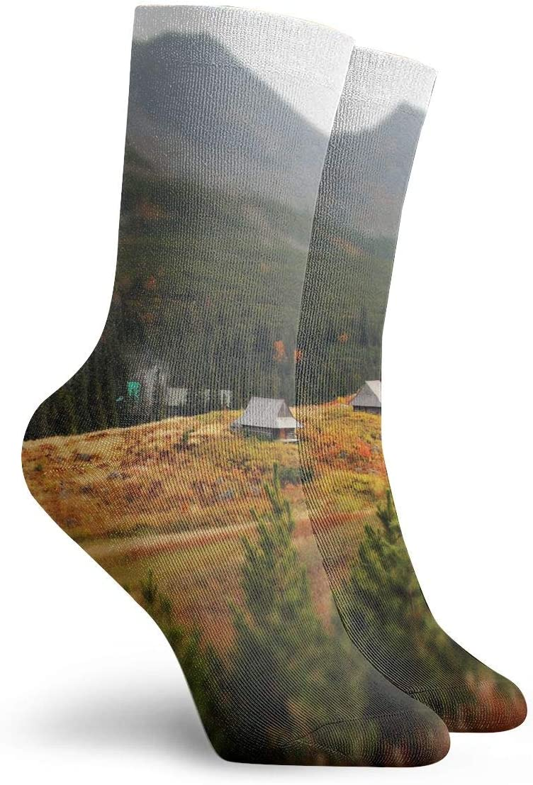 WEEDKEYCAT Coutryside Mountains Landscape Adult Short Socks Cotton Fun Socks for Mens Womens Yoga Hiking Cycling Running Soccer Sports
