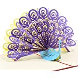 Paper Spirit Pop up Cards Birthday, Christmas, Peacock, 3D Pop up Cards all Occasion, Anniversary for kids, Thank You Handmade Christian Cards