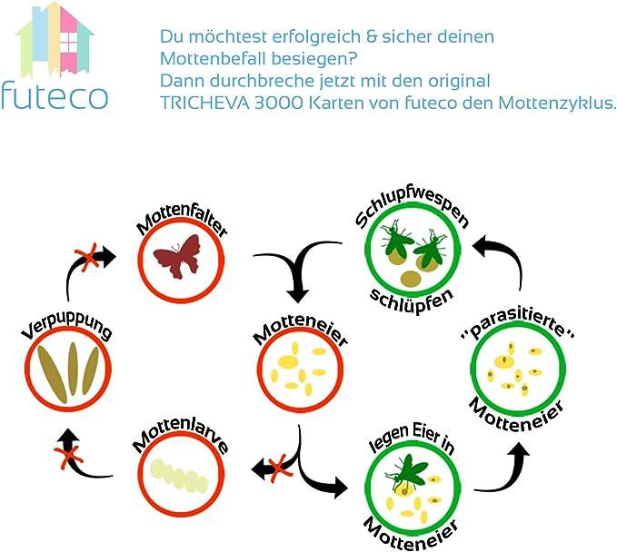 Futeco Schlupfwespen Gegen Kleidermotten 4 Karten A 5 Lieferungen 100 Biologisch Chemiefrei Naturlich Die Zuverlassige Alternative Zur Klassischen Mottenbekampfung Made In Germany Amazon De Garten