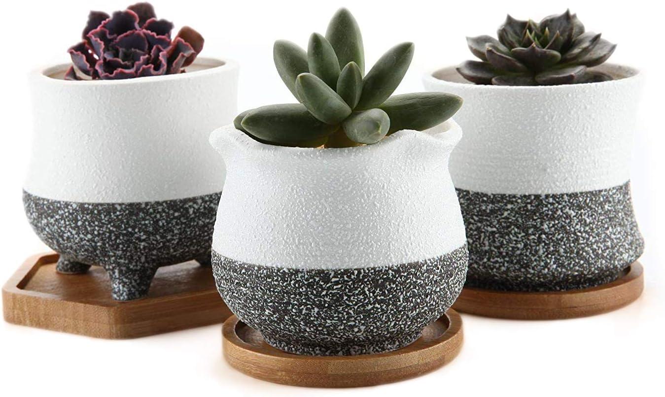 succulent planter pot yellow fade to white crackle raku cactus planter  ceramic pottery pot bonsai planter 6 12 x 2 34 d-2