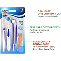 13pk Dental Care Kit Tooth Pick Brush Cleaner Plaque Mirror Teeth Stain Remover   Includes Dental Care Ebook